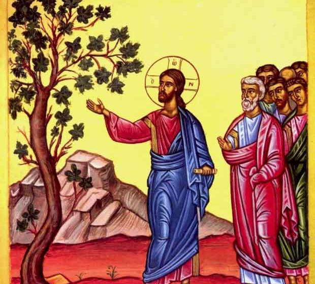 Parable Of The Fig Tree Jesus On Knowing If Hes Coming Now Or